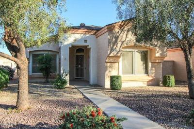 Sun City West Single Family Home For Sale: 16171 W Vista North Drive