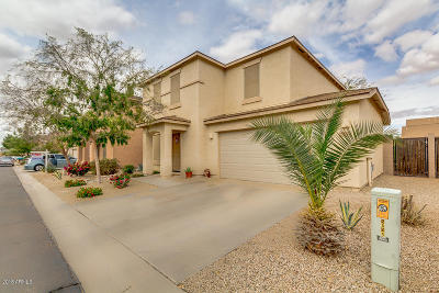 San Tan Valley Single Family Home For Sale: 2558 E Meadow Creek Way