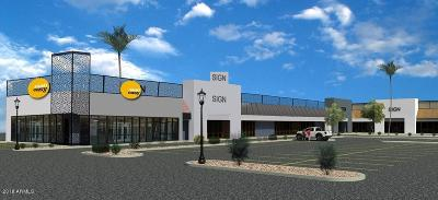 Tempe Commercial Lease For Lease: 5054 S Price Road