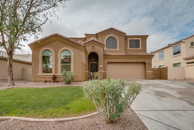 Queen Creek, San Tan Valley Single Family Home For Sale: 28874 N Broken Shale Drive