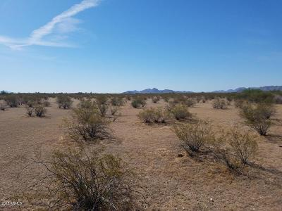 Buckeye Residential Lots & Land For Sale: 211xxx W Spur Road