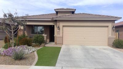 San Tan Valley Single Family Home For Sale: 1478 W Popcorn Tree Avenue