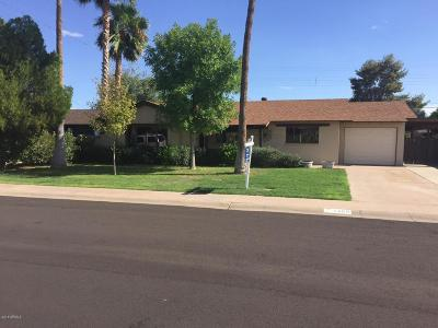 Scottsdale Single Family Home For Sale: 8309 E Roma Avenue