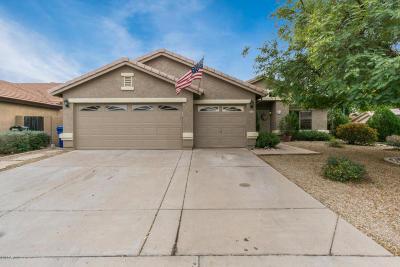 Mesa Single Family Home For Sale: 9635 E Juanita Avenue