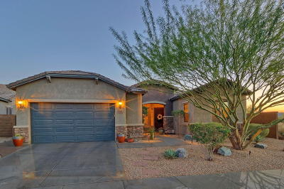 Cave Creek Single Family Home For Sale: 5819 E Jake Haven