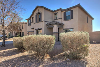 San Tan Valley Single Family Home For Sale: 4513 E Whitehall Drive