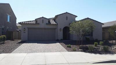 Gilbert Single Family Home For Sale: 3869 E Strawberry Drive