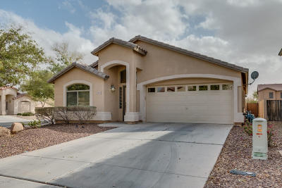 Maricopa Single Family Home For Sale: 40317 W Hayden Drive