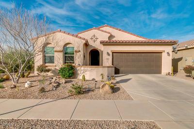 Casa Grande Single Family Home For Sale: 2616 E Questa Trail