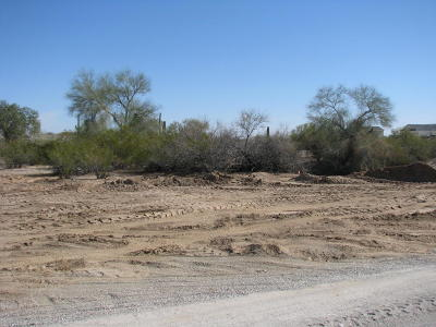 Queen Creek AZ Residential Lots & Land For Sale: $90,000