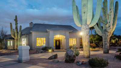 Phoenix Single Family Home For Sale: 11621 S Warpaint Drive