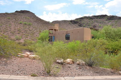 Phoenix Residential Lots & Land For Sale: 15238 N 11th Street