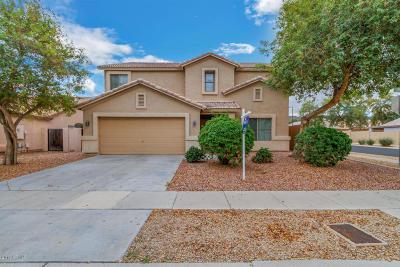Phoenix Single Family Home For Sale: 1705 E Beautiful Lane