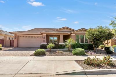 Queen Creek Single Family Home For Sale: 22075 E Rosa Road