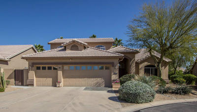 Goodyear Single Family Home For Sale: 3783 N 154th Lane