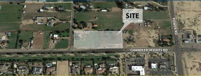Maricopa County Commercial For Sale: 23517 S 182nd Street