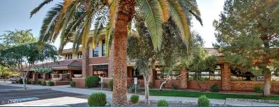 Maricopa County Commercial For Sale: 3165 S Price Road
