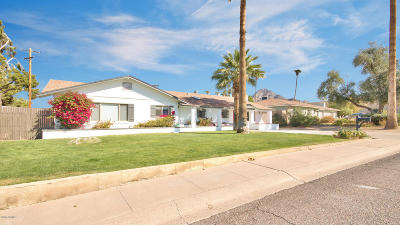 Phoenix Single Family Home For Sale: 1764 E Tuckey Lane