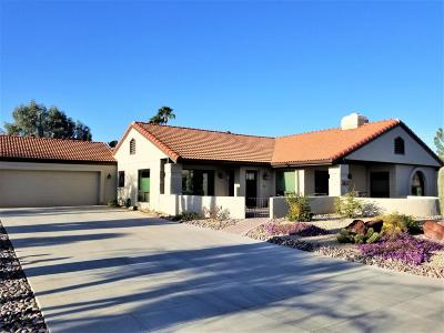 Rio Verde Single Family Home For Sale: 26417 N Avenida Del Ray