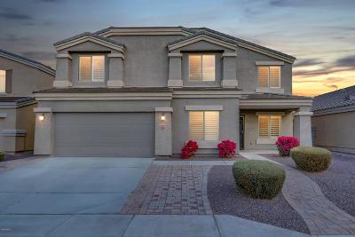 Peoria Single Family Home For Sale: 9580 W Frank Avenue