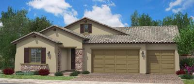 Maricopa Single Family Home For Sale: 18103 N Tara Lane