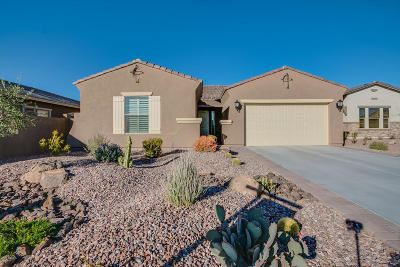 Goodyear Single Family Home For Sale: 18194 W Desert Sage Drive