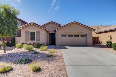 Peoria Single Family Home For Sale: 13245 W Avenida Del Rey