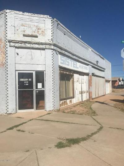 Douglas Commercial For Sale: 1501 N G Avenue