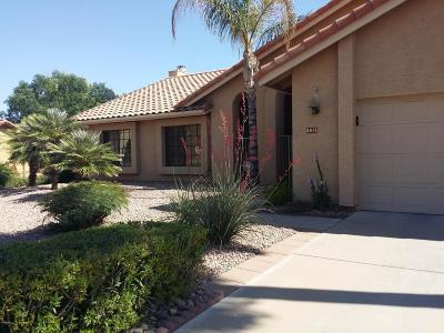 Scottsdale Single Family Home For Sale: 5015 E Karen Drive