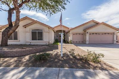 Phoenix Single Family Home For Sale: 1619 E Carter Road