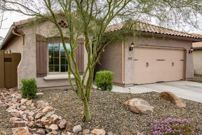 Phoenix Single Family Home For Sale: 27727 N 18th Drive