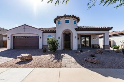 Queen Creek Single Family Home For Sale: 22481 E Pecan Lane