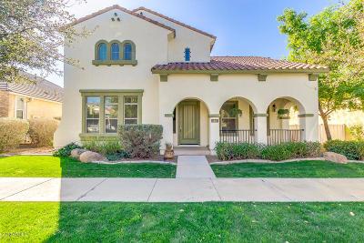 Gilbert Single Family Home For Sale: 3113 E Agritopia Loop N