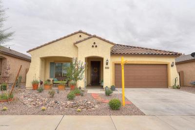 Mesa Single Family Home For Sale: 10853 E Toluca Avenue