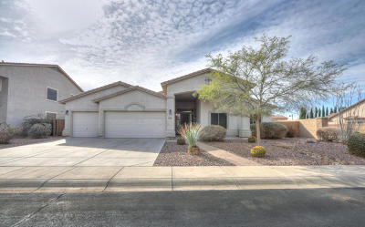 Maricopa Single Family Home For Sale: 20252 N Madison Drive