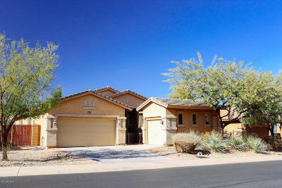 Peoria Single Family Home For Sale: 29014 N 70th Lane
