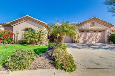 Chandler Single Family Home For Sale: 2820 E Buena Vista Drive