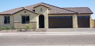 Goodyear Single Family Home For Sale: 17403 W Sherman Street