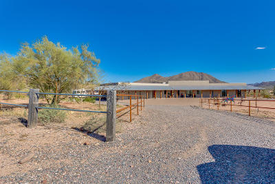 Fort Mcdowell Single Family Home For Sale: 22915 E Pleasant View Road