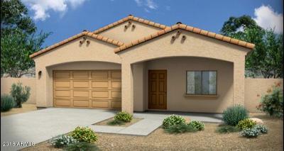 Phoenix Single Family Home For Sale: 2532 E Tamarisk Avenue