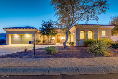 Sun City Single Family Home UCB (Under Contract-Backups): 23116 N Padaro Court