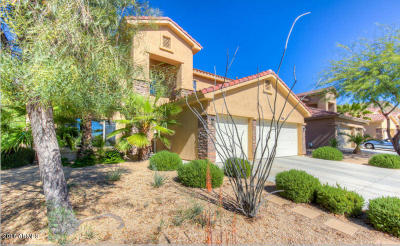 Phoenix Single Family Home For Sale: 2516 W Barbie Lane