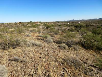 Residential Lots & Land For Sale: 19580 W Verde Hills Drive