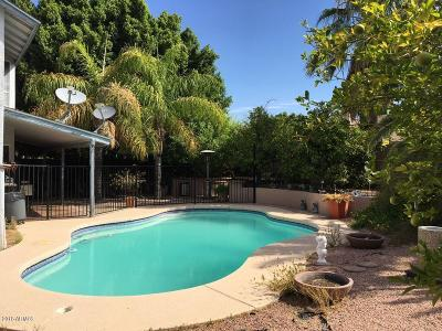 Mesa Single Family Home For Sale: 1331 N Avoca