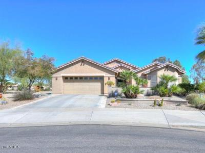Casa Grande Single Family Home For Sale: 66 S Laura Lane