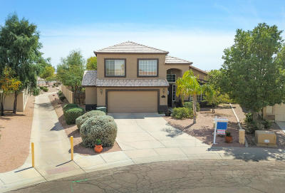Casa Grande Single Family Home For Sale: 2104 N Nancy Lane