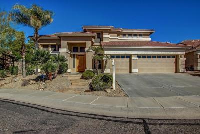 Glendale Single Family Home For Sale: 6546 W Via Montoya Drive
