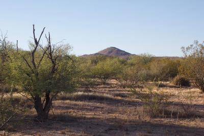 Scottsdale Residential Lots & Land For Sale: 27422 N 137th Street