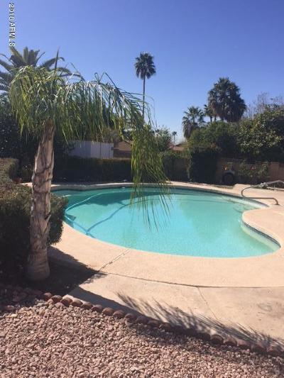 Mesa Single Family Home For Sale: 6047 E McLellan Road