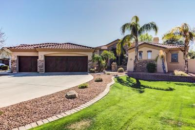 Chandler Single Family Home For Sale: 745 E County Down Drive